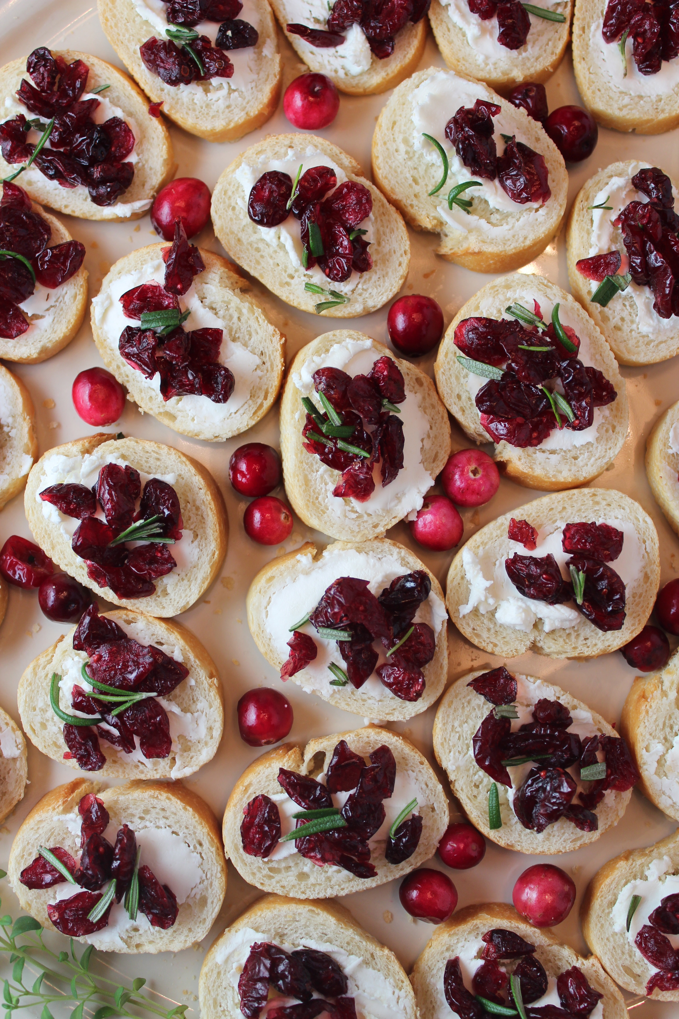 Goat Cheese Cranberry Crostini Appetizer