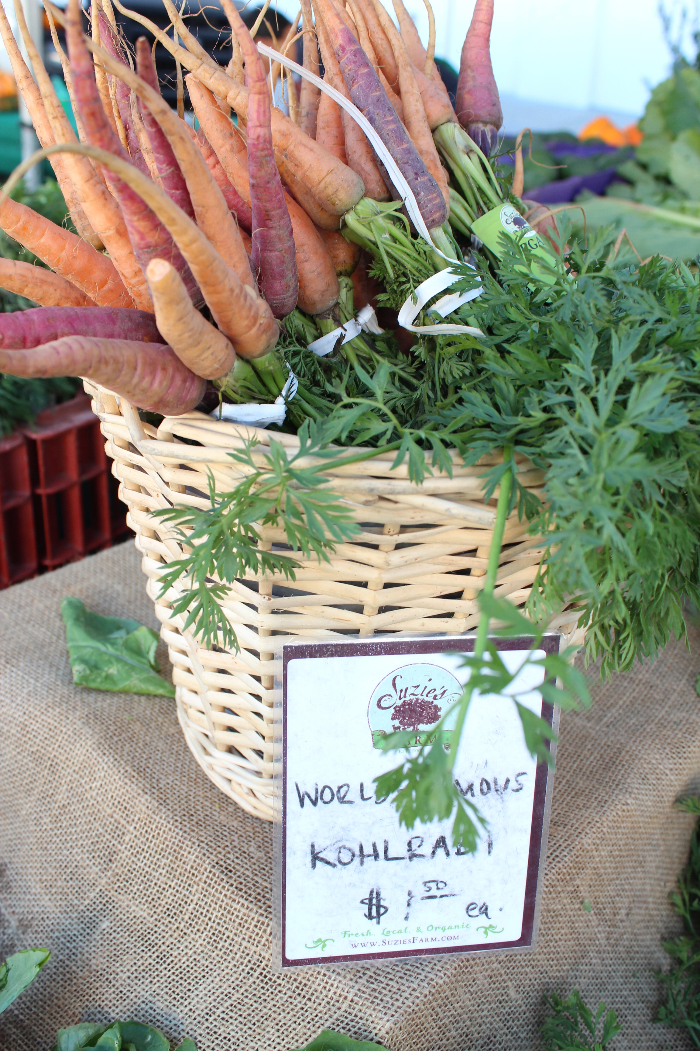 Suzies farms, san diego, organic sprouts, organic produce, organic vegetables, organic herbs, herbs, vegetables, farmers market